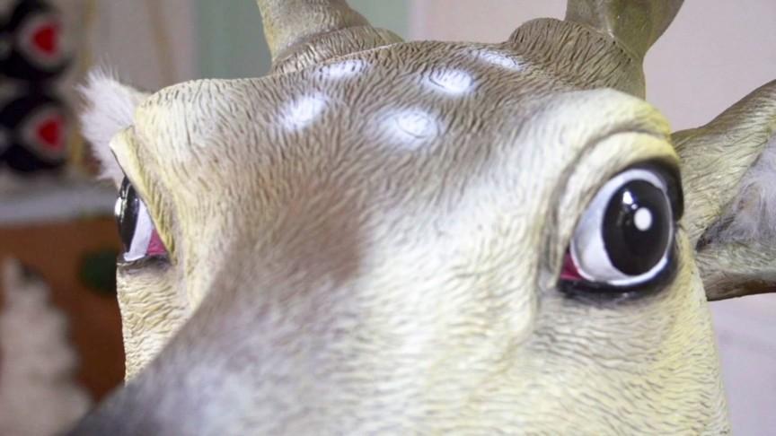 ANIMAL MASK LESBIAN 画像10