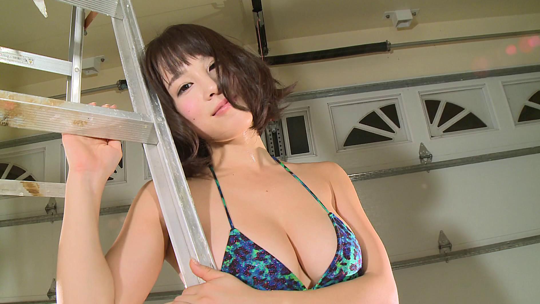 ワンちゃん 犬童美乃梨4