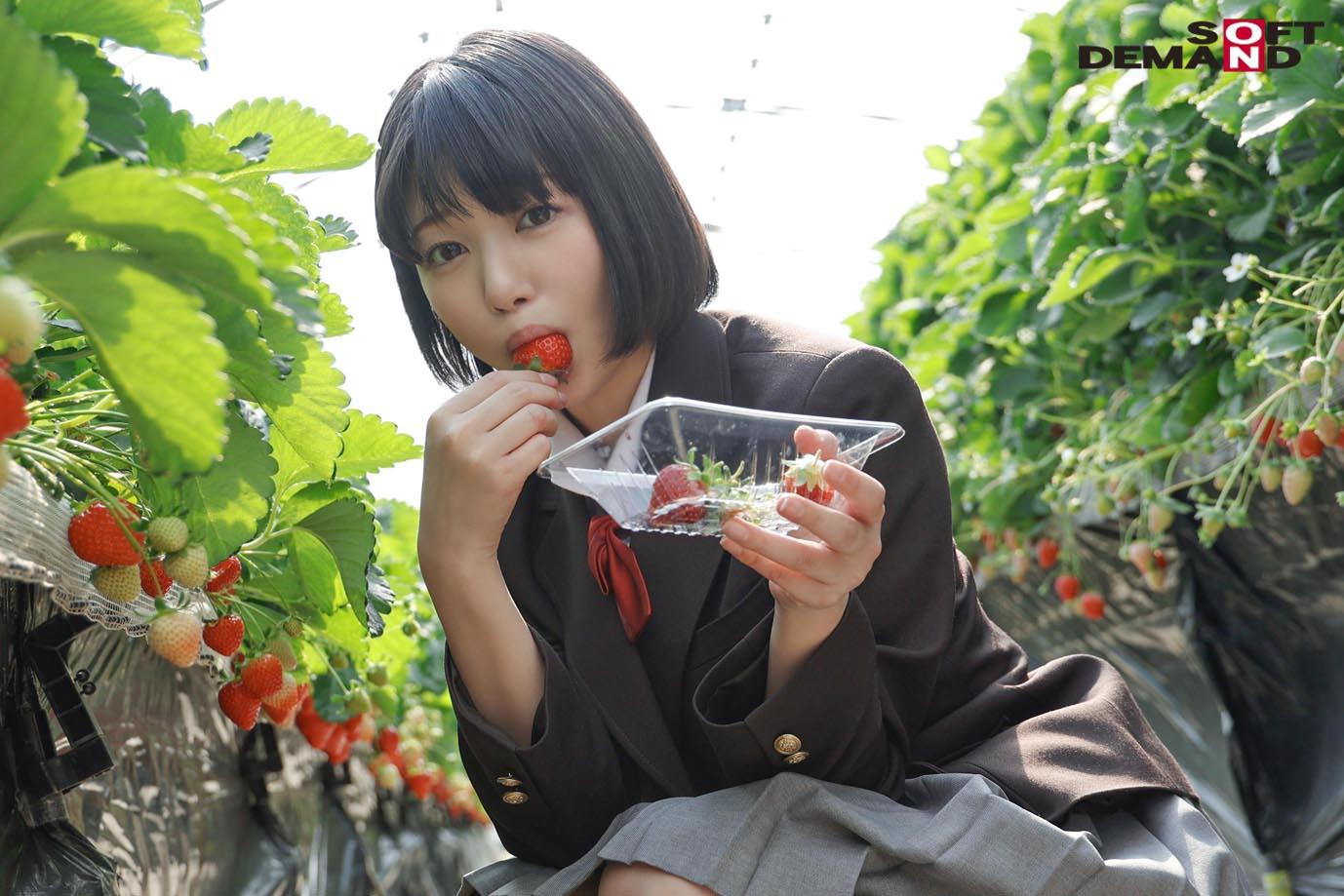 未成熟なカラダ、あやうい美少女 18歳 SOD専属AVデビュー 桃乃りん 画像3