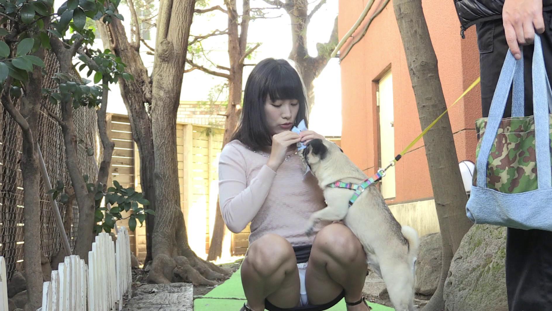 犬の散歩中「カワイイ」と集まってきた愛犬女子は犬とじゃれあううちに無意識でパンツ丸見え!ヤレルと思った僕はフル勃起、気が付いた女はもはやメロメロで狙い通り、公園のトイレや自宅で即ハメに成功です。 画像1