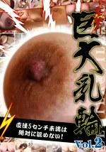 電撃!!巨大乳輪 Vol.2