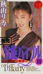 官能バイブル ~第3章~ 秋山リカ
