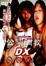公開調教DX -スカトロ編-