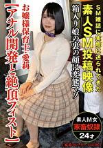 お嬢様保育士・愛莉【アナル開発と絶頂フィスト】(家畜コレクターvol.06)